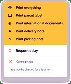 print_options